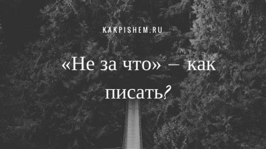 «Не за что» как правильно писать?