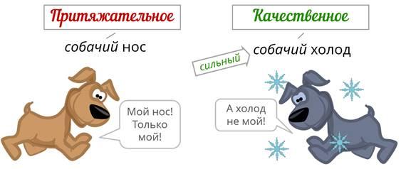 Разряды имен прилагательных в таблицах с примерами