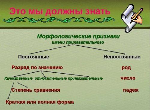 Что такое начальная форма прилагательного и как ее определить