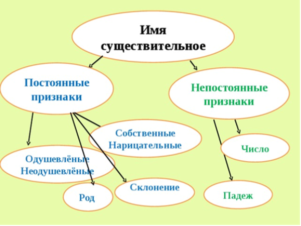 Как делать морфологический разбор имени существительного в 7 классе