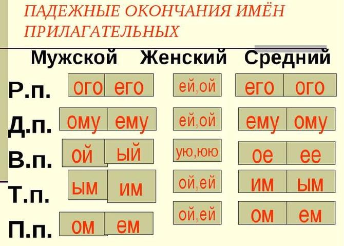 Правописание гласных в падежных окончаниях имен прилагательных