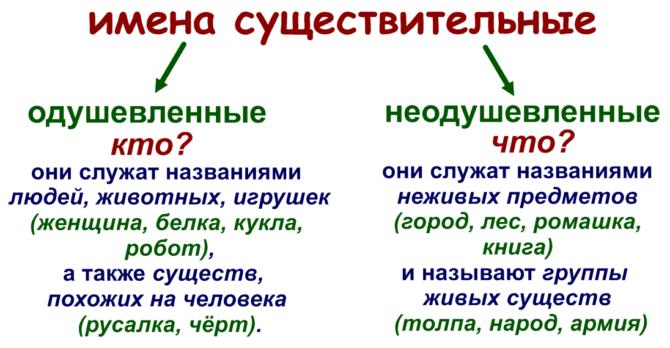 Признаки существительного: какие из них постоянные