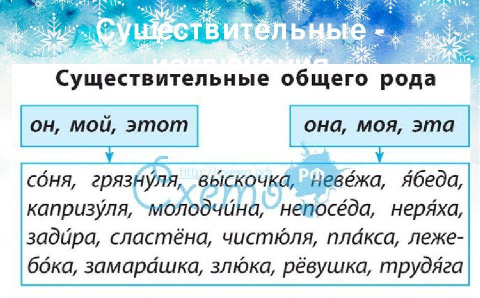 Какие слова относятся к существительным общего рода