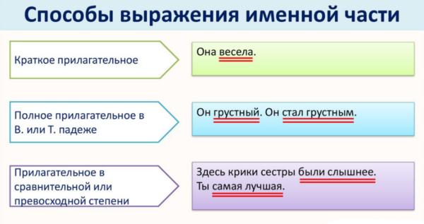 Краткие и полные прилагательные: что это такое, как определить