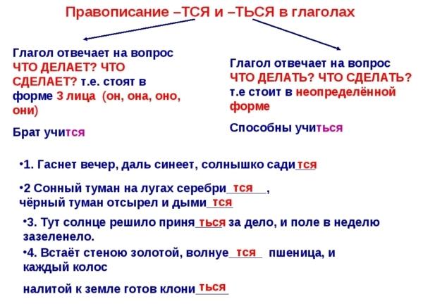 Правописание мягкого знака в глаголах на -ТСЯ, -ТЬСЯ