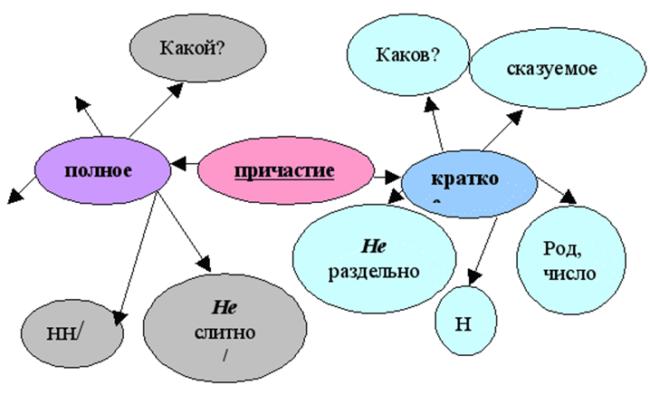 Признаки краткого причастия, роль в предложении, примеры