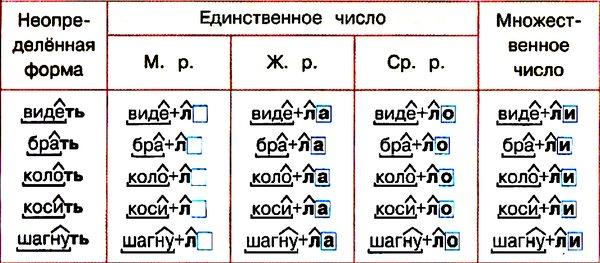 Род глаголов в русском языке: как определить форму